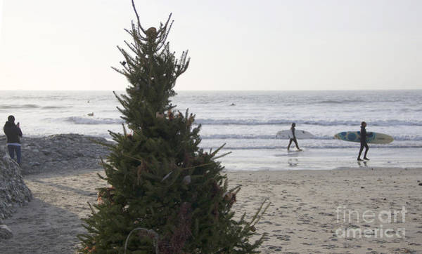 Photograph - Christmas On The Beach 2 by Michael Mooney