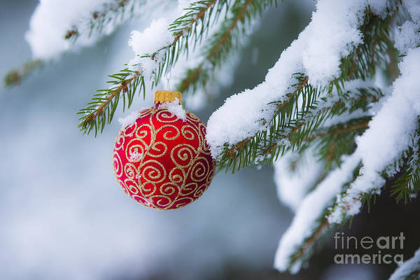Wall Art - Photograph - Christmas Ornament by Diane Diederich