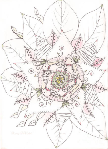 Wall Art - Drawing - Christmas Peace Poinsettia  by Nancy TeWinkel Lauren