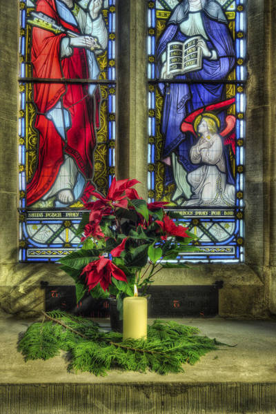 Photograph - Christmas Poinsettia by Ian Mitchell