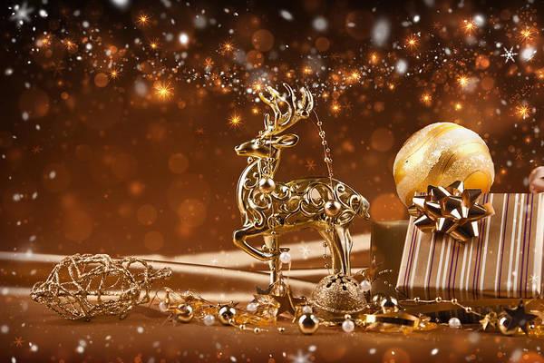 Christmas Reindeer In Gold Art Print