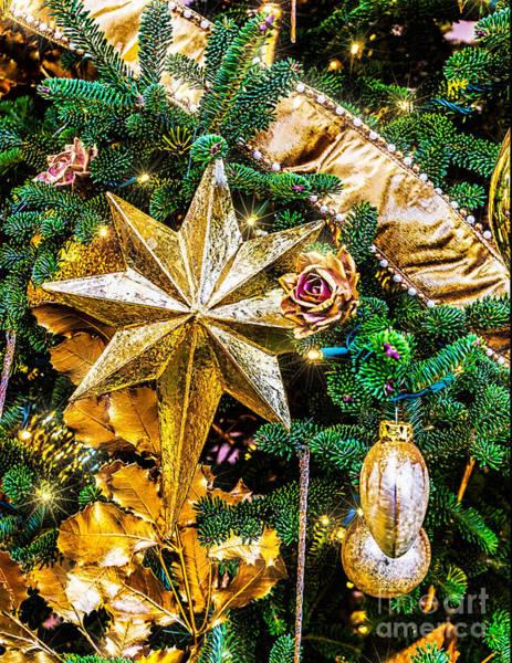 Photograph - Christmas Star by Nick Zelinsky