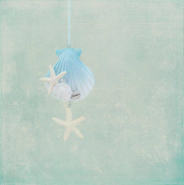 Photograph - Christmas Starfish by Kim Hojnacki