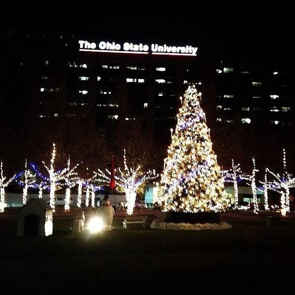 Ohio State Wall Art - Photograph - The Ohio State University by Brooke Wheeler