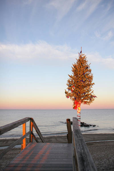 Cape Cod Sunset Photograph - Christmas Tree At The End Of Sandwich by Susan Pease