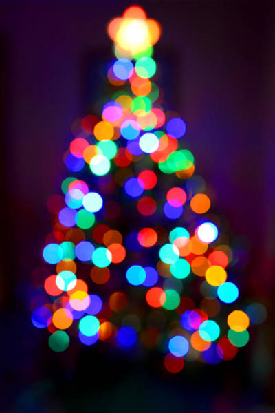 Photograph - Christmas Tree by Clint Buhler