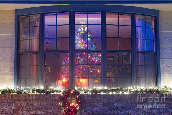 Photograph - Christmas Tree In The Window by James BO Insogna