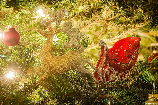 Photograph - Christmas Tree Ornaments by Alex Grichenko