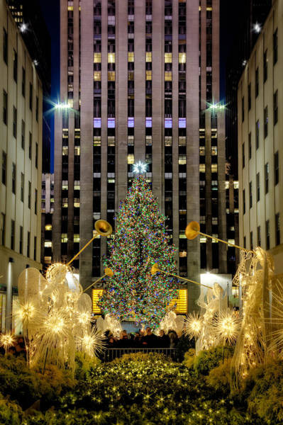 Photograph - Christmas Tree Rockefeller Center  Nyc by Susan Candelario