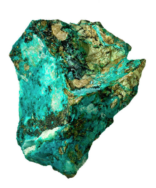 Wall Art - Photograph - Chrysocolla Specimen by Natural History Museum, London/science Photo Library