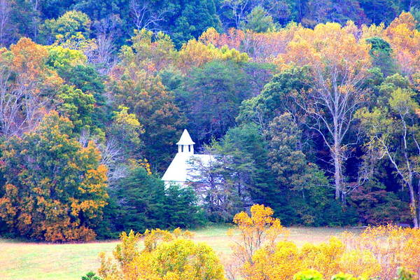 Photograph - Church In The Glade by Cynthia Mask