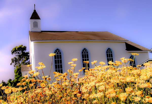 Photograph - Church Of The Yellow Daisies by Jim DeLillo