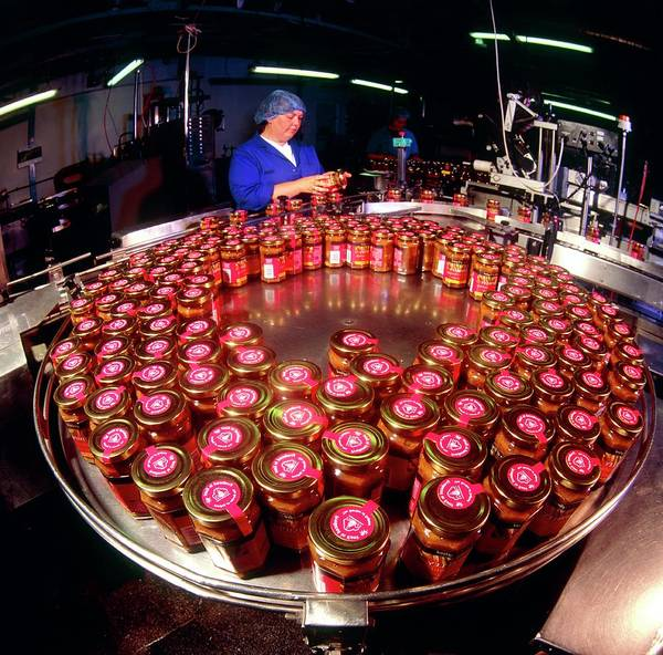 British Food Photograph - Chutney Production by Brian Bell/science Photo Library