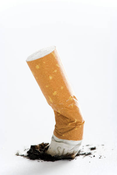 Tab Photograph - Cigarette Butt by Gustoimages/science Photo Library
