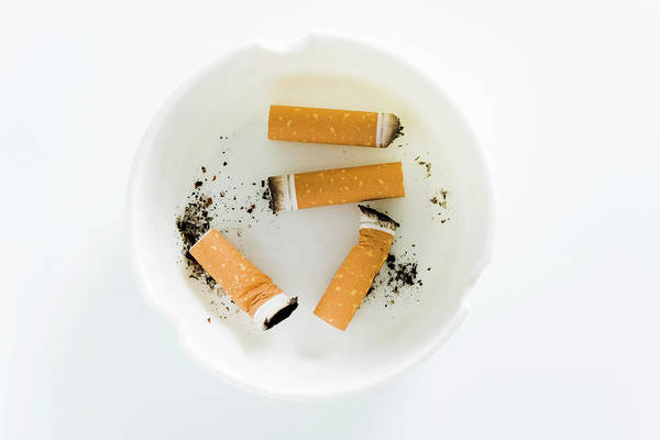 Tab Photograph - Cigarette Butts by Gustoimages/science Photo Library