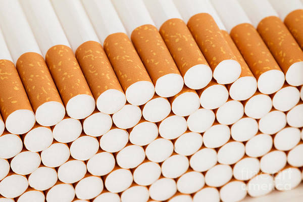 Wall Art - Photograph - Cigarettes by Michal Boubin