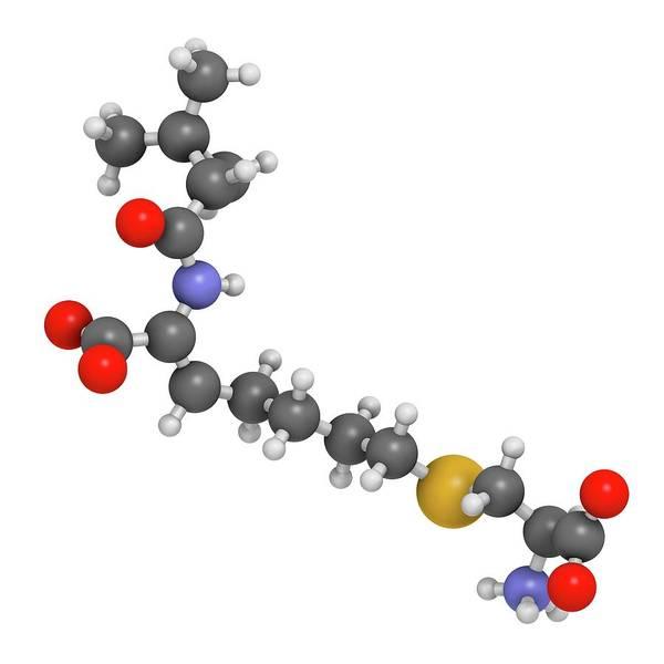 Pharma Wall Art - Photograph - Cilastatin Molecule by Molekuul