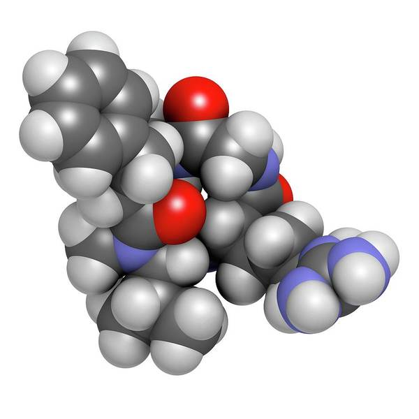 Molecular Wall Art - Photograph - Cilengitide Cancer Drug Molecule by Molekuul/science Photo Library