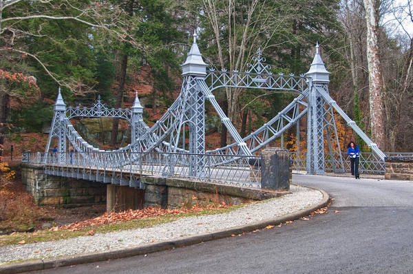 Cinderella Bridge Art Print