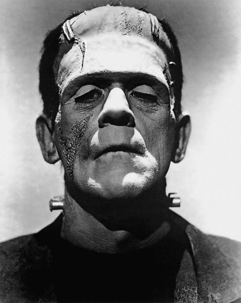 Boris Karloff Photograph - Cinema Frankenstein by Daniel Hagerman