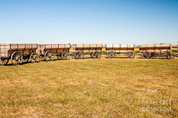 Photograph - Circle The Wagons by Sue Smith