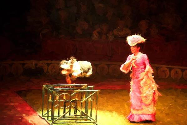 Photograph - Circus Dog Jumping by Alice Gipson