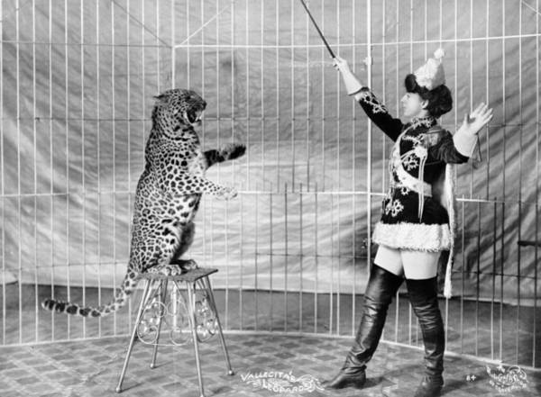 Wall Art - Photograph - Circus Leopard Trainer by Granger
