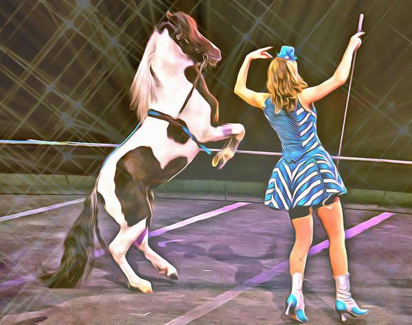 Photograph - Circus Pony by Alice Gipson
