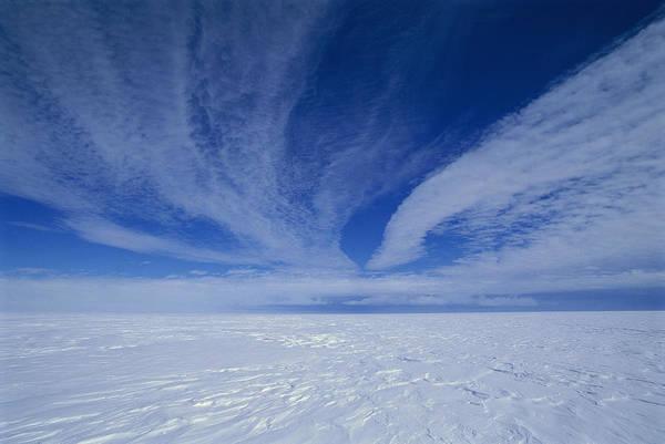 Dixon Photograph - Cirrus Clouds And Ice Antarctica by Grant  Dixon