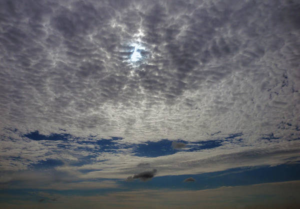 Photograph - Cirrus Clouds by Dragan Kudjerski
