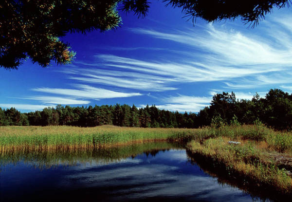 Finnish Photograph - Cirrus Clouds by Pekka Parviainen/science Photo Library