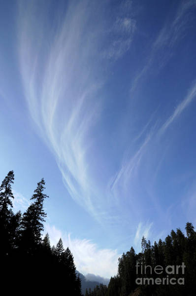 Photograph - Cirrus Clouds by Robert and Jean Pollock