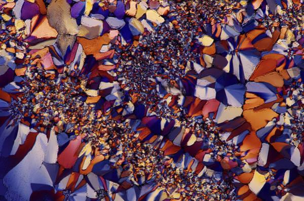Biochemistry Photograph - Citric Acid Crystals by Marek Mis