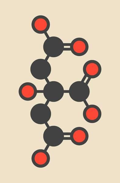 Preservative Wall Art - Photograph - Citric Acid Molecule by Molekuul