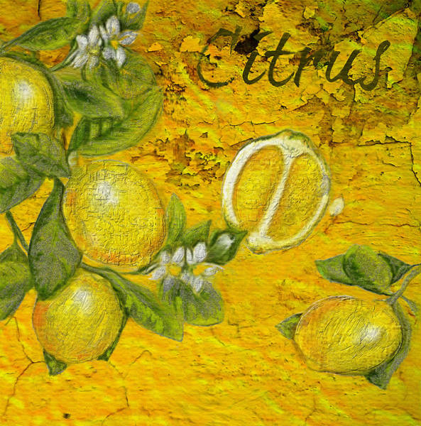 Painting - Citrus by Portraits By NC