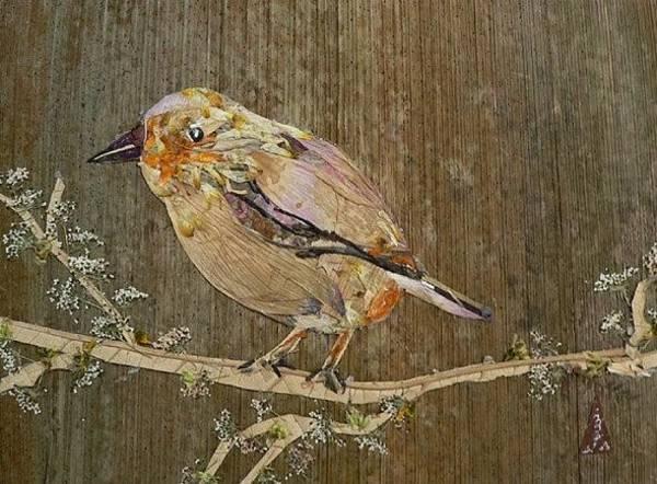 Eco Friendly Mixed Media - City Bird by Basant Soni