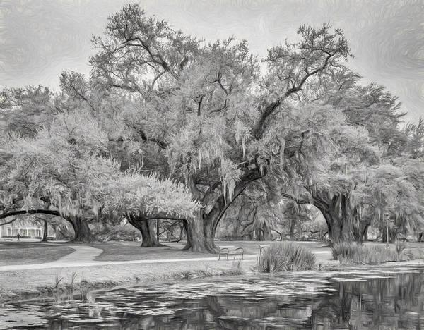 Lagoon Digital Art - City Park Giants - Paint Bw by Steve Harrington