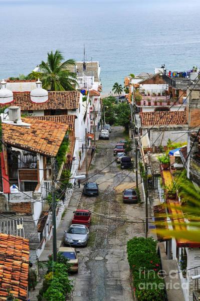 Photograph - City Street In Puerto Vallarta by Elena Elisseeva
