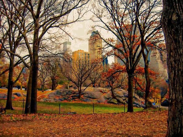 Photograph - New York Series 03 by Carlos Diaz
