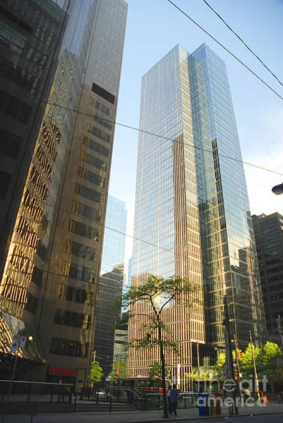 Photograph - Cityscape Of Toronto by Brenda Kean