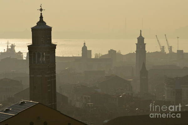 Wall Art - Photograph - Cityscape Of Venice And Cranes Silhouettes by Sami Sarkis