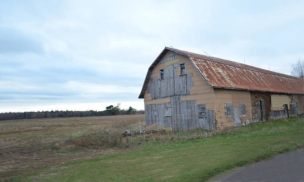Photograph - Classic Barn by Maggy Marsh