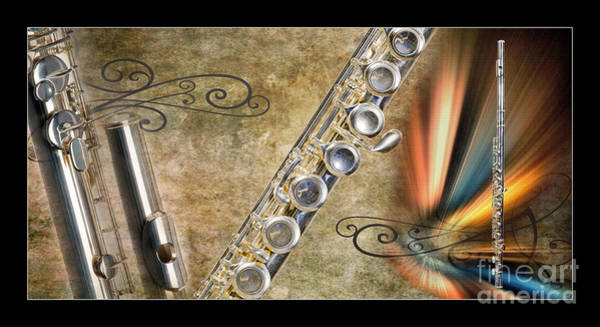 Photograph - Classic Flute Music Instrument Collage Photograph 3397.02 by M K Miller