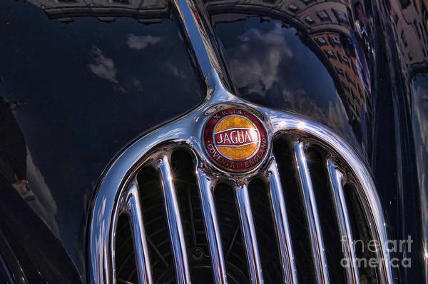 Photograph - Classic Jaguar by Brenda Kean