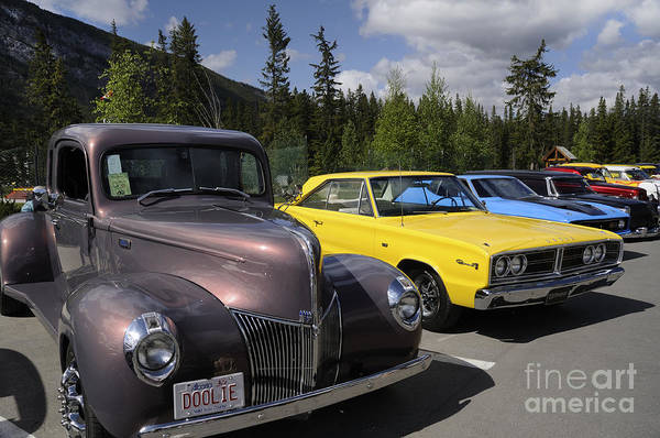 Photograph - Classic Style And Substance by Brenda Kean