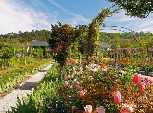 Claude Monet Photograph - Claude Monet's Garden In Giverny by Alex Cassels