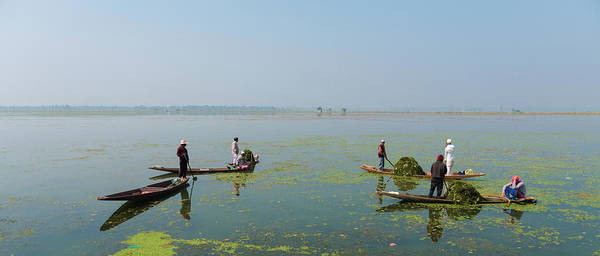 Dal Lake Photograph - Cleaning Dal Lake, Srinagar by © Sachin Saxena. All Rights Reserved.