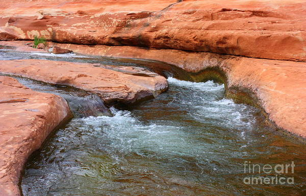 Photograph - Clear Water At Slide Rock by Carol Groenen