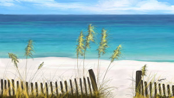 Fence Post Digital Art - Clear Water Florida by Anthony Fishburne