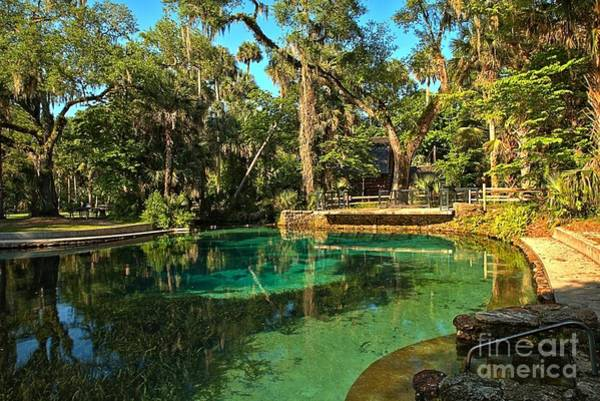Photograph - Clear Waters At Juniper Springs by Adam Jewell
